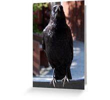 You have my full attention, sir! (face-to-CrowFace) Greeting Card