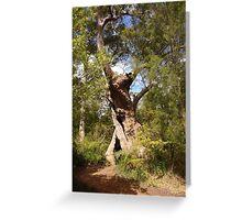 Tingle Tree Greeting Card