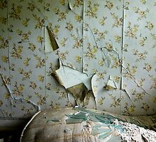 torn wallpaper by rob dobi