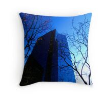 the wall, british columbia Canada Throw Pillow