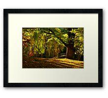 autumn calm Framed Print