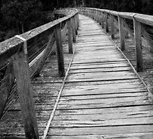Wooden Trestle by Rachael Taylor