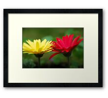 Touching... Framed Print