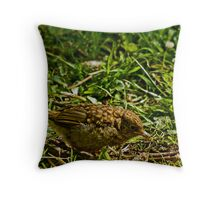 Learning to forage for food! Throw Pillow