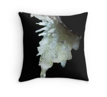 Delicate Aragonite formation in Bunkers hole cave. Devon Throw Pillow