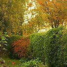 Garden Corner by Gilberte