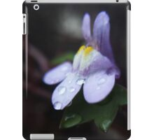 Freezing Winter Morning Dew iPad Case/Skin