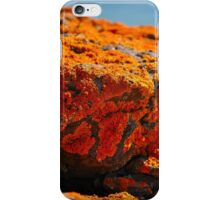 the warmth iPhone Case/Skin
