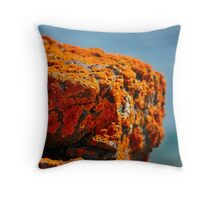 the warmth Throw Pillow