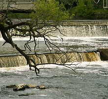 Exeter, NH Waterfalls by Rpnzle
