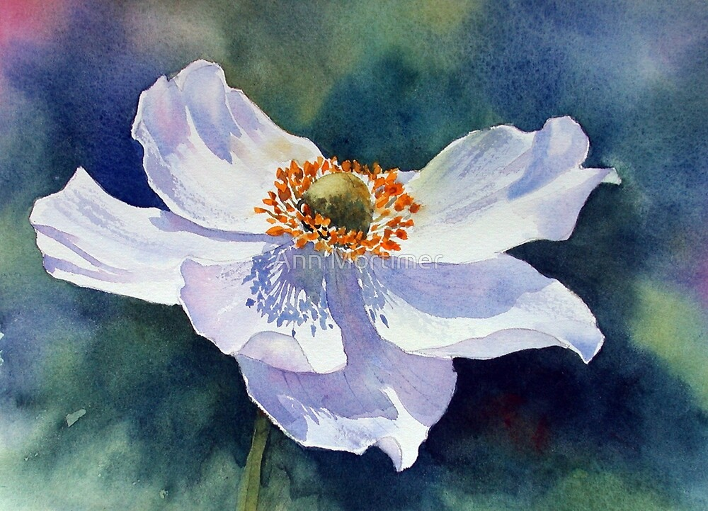 Japanese anemone by Ann Mortimer