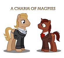 Charm of Magpies ponies by KJCharles
