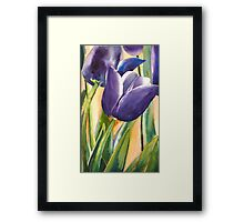 Time for Tulips Framed Print