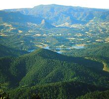 Mt. Warning: The View by Jennifer Ellison