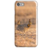 Prairie Chicken 2013-12.jpg iPhone Case/Skin