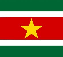 flag of Suriname by tony4urban