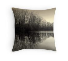 Winter Symmetry Throw Pillow