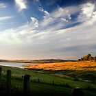 Wivenhoe Dam by Alecia Scott