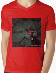 American Ginseng w/red Berries Mens V-Neck T-Shirt