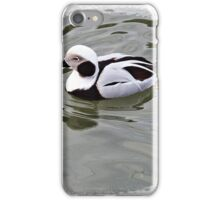 Long Tailed Duck iPhone Case/Skin