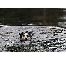 Swimming Photographic Print