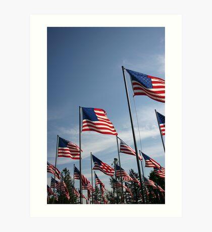 The Flags of USA Art Print