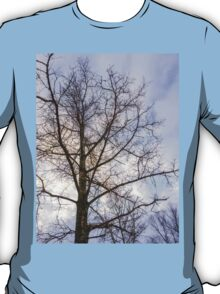 Trees and sky 3 T-Shirt