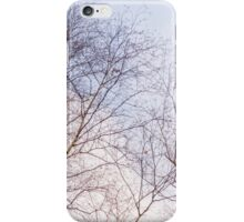 Trees and sky 4 iPhone Case/Skin