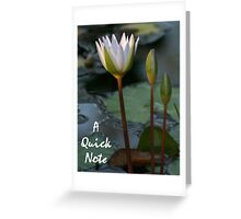 A Quick Note Greeting Card