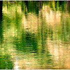 Reflections In A Pond #10 by Mark Ross