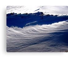 SnoWaves Canvas Print