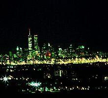 Twin Towers by Richard Rando