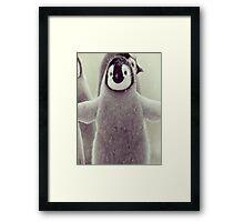 cutest penguin  Framed Print