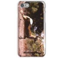 White-Tail Deer Running iPhone Case/Skin