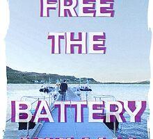 Stornoway - Battery Human by roseofskye