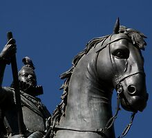 Pigeon atop Philip III atop horse, Plaza Mayor, Madrid by jfew