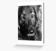These Eyes !  Greeting Card