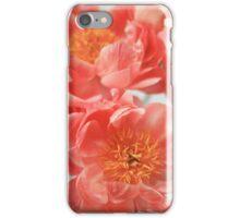 Paeonia #6 iPhone Case/Skin