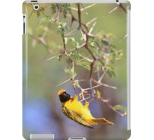 Southern Masked Weaver - Acrobatic Fun iPad Case/Skin