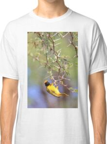 Southern Masked Weaver - Acrobatic Fun Classic T-Shirt