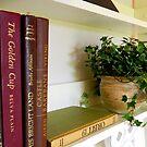 A Simple Shelf    ^ by ctheworld