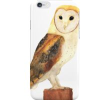 Watercolour Barn Owl iPhone Case/Skin