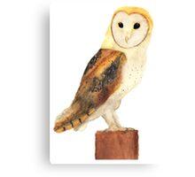 Watercolour Barn Owl Canvas Print