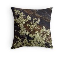 Ice Box Glow in Color Throw Pillow