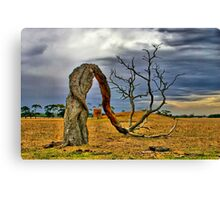 """Bowing to the Forces of Time and Nature"" Canvas Print"