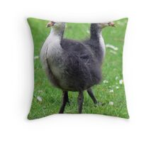 Two Coot Chicks Throw Pillow