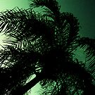 green tree.... by xXDarkAngelXx