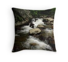 INDIAN VALLEY CREEK Throw Pillow