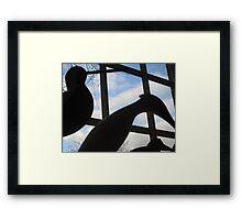 Shadows of the Sea Birds Framed Print