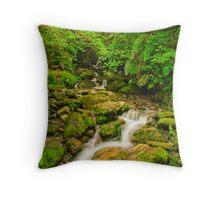 Waterfall at Fox Glacier Throw Pillow